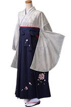 菊花ライトブルー