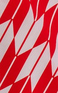 矢絣 赤・白